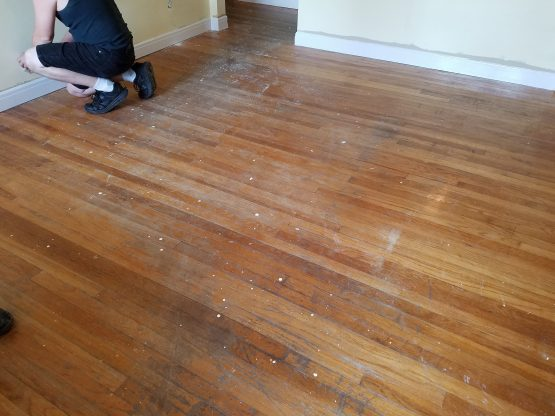 April Refinishing Project in Dunedin